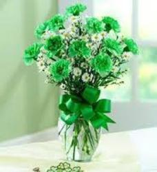 St Pats Green Carnations