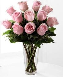12 Soft Pink Roses in Beavercreek, Ohio, near Dayton, OH