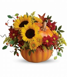 Teleflora's Pretty Pumpkin Bouquet in Beavercreek, Ohio, near Dayton, OH