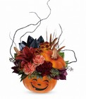 Teleflora's Halloween Magic Bouquet in Beavercreek, Ohio, near Dayton, OH
