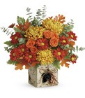 Teleflora's Wild Autumn Bouquet in Beavercreek, Ohio, near Dayton, OH