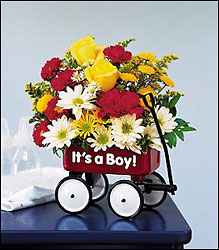 Teleflora's Baby's First Wagon in Beavercreek, Ohio, near Dayton, OH